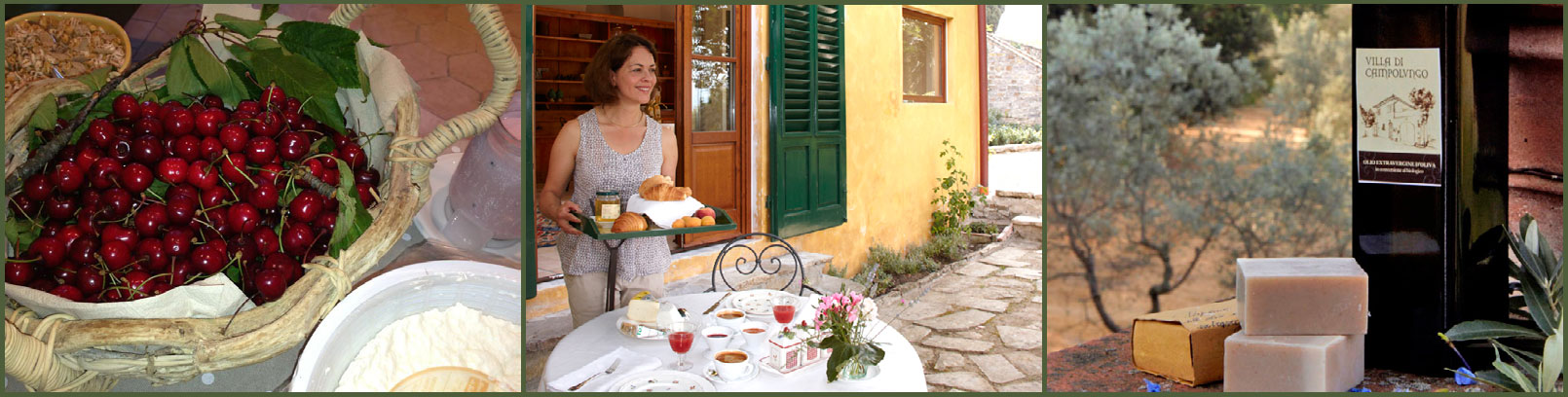 Eco Country House B&B Villa di Campolungo - Fiesole, Florence, Italy